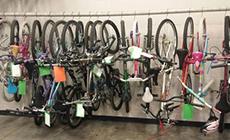Bicycle Licenses
